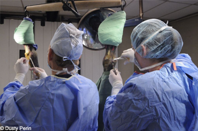 An Intern assists in surgery